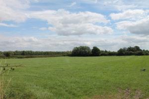 Ox House Farm (1)